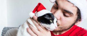 nutrición-salud-y-bienestar-para-tus-mascotas-